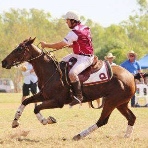 SCONZ Polo & Polocrosse