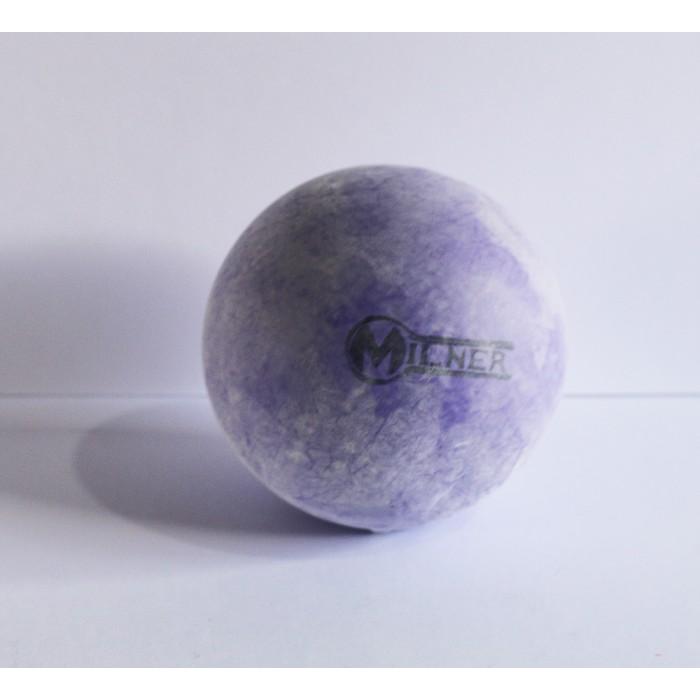 Milner Polocrosse Ball