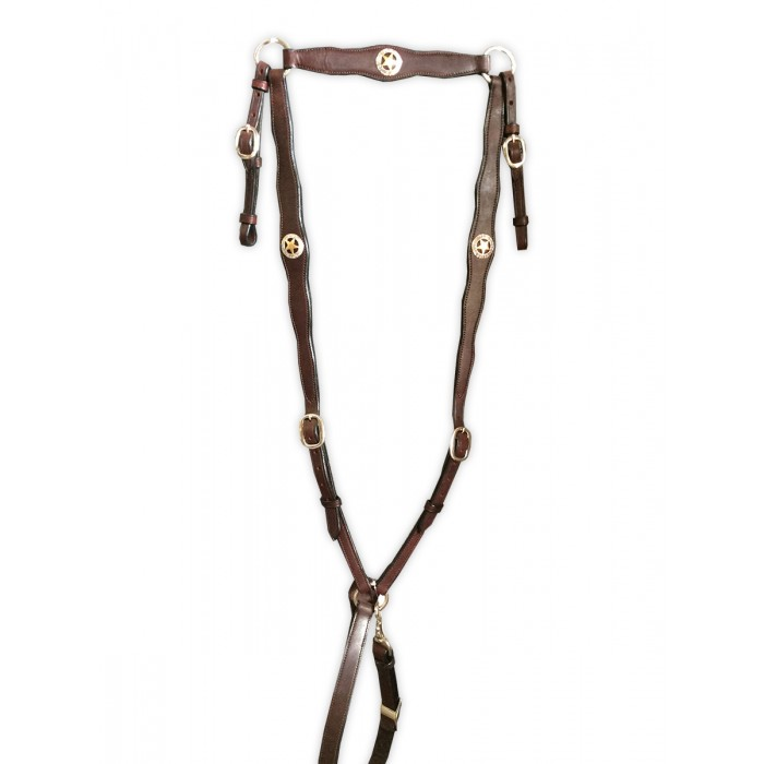 Breastplate - Leather with Texas Lone Star conchos