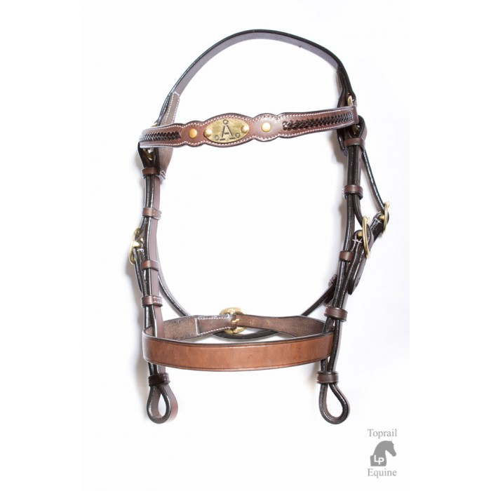 "ASH ""A"" Show Bridle with GREEN & GOLD plait"