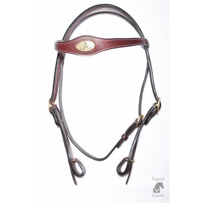 "ASH ""A"" Campdraft Bridle with quick change"