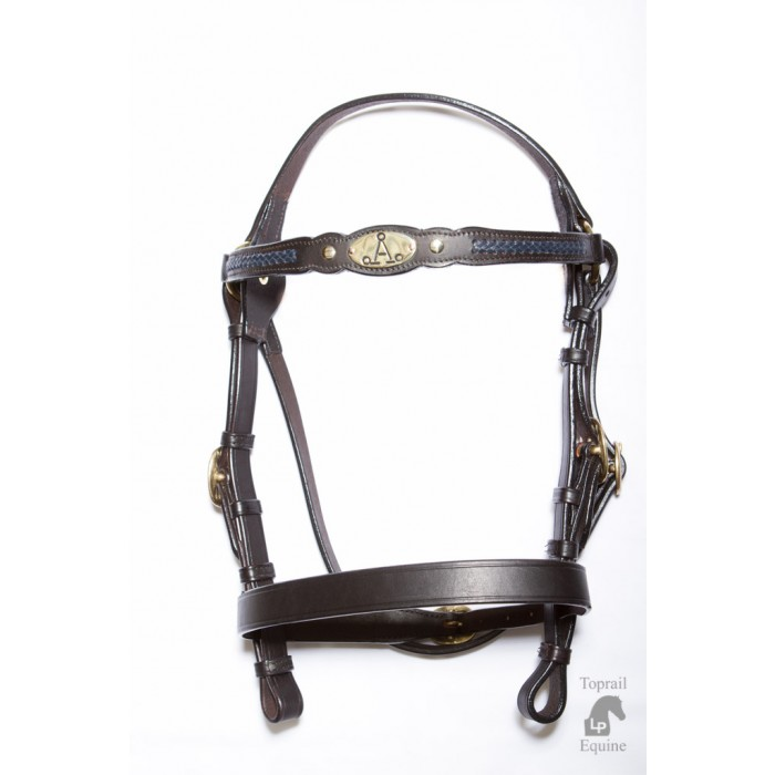 "ASH ""A"" Show Bridle with BLUE Plait"