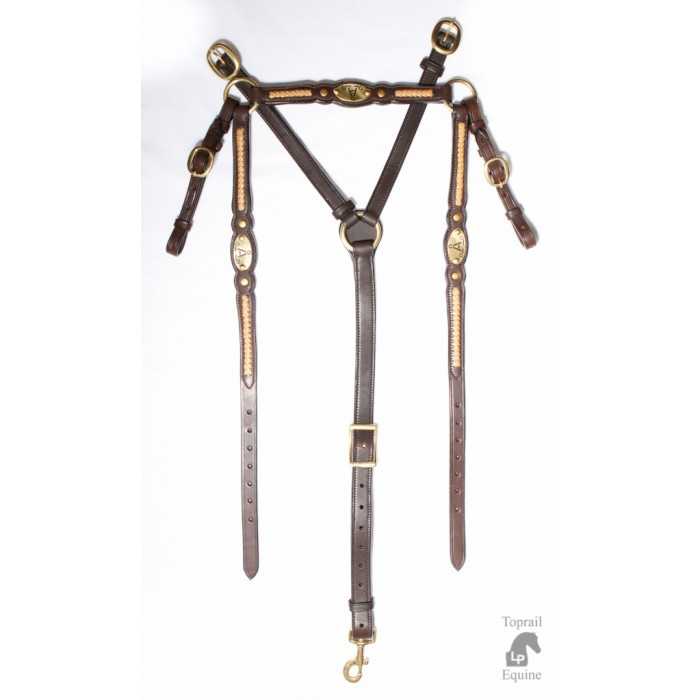 """ASH """"A"""" Show Breastplate with GOLD plait"""