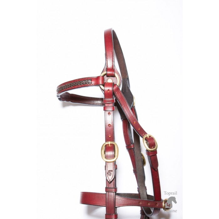 Bridle - Showring - Leather with 3 studs and dark contrast leather plait