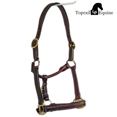 Show Halters and Leads
